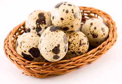 Loudounberry_Farm_quail_eggs