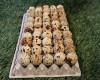 Wholesale Quail Eggs